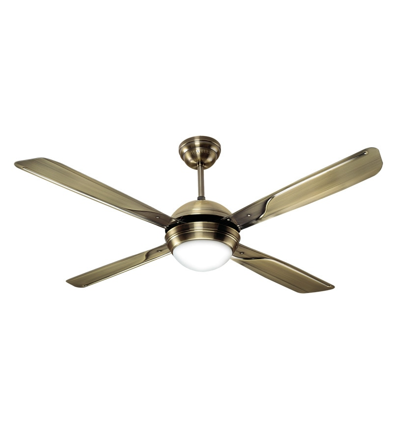 Water Powered Ceiling Fan : Havells avion under light ceiling fan by online