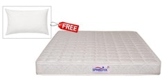 Healthpaedic Single Size (75x36) 5 Inches Thick Mattress (FREE Pillow)by Springtek Ortho Coir