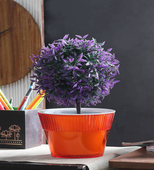 Buy Orange Plastic Pot by Herevin Online - Pots - Pots \u0026 Planters - Decor - Pepperfry Product : different types of flower pots - startupinsights.org