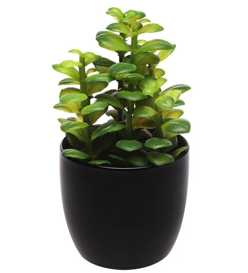 Homestop Potted Artificial Jade Plant In Ceramic Pot