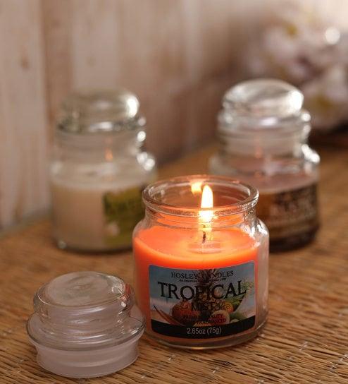 Hosley Set 3 Multicolor highly fragranced Jar Candle for Decoration/  Festive|Rustic Sandlewood| Jasmine| Tropical Mist