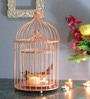 Golden Powder Coated Iron Bird Cage with Floral Vine Tea Light Holder - Set of 2 by Homesake