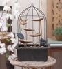Importwala Black & Gold Flying Bird Cage with Led Gold Metal Fountain