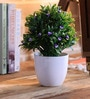 Green & Blue Ceramic Artificial Plant in Pot by Importwala