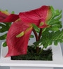 Artificial Cala Lily Flowers with Pot by Importwala
