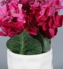Purple Ceramic Flowers in Pot by Importwala