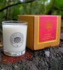 Indie Eco Candles Apple Cinnamon Candle