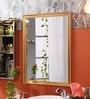 JJ Sanitaryware Maxxis Stainless Steel Bathroom Mirror