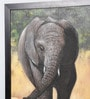 Canvas 29.5 x 0.5 x 38 Inch Elephant Wall Painting by Kokoon