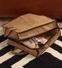 Krio Designs Mesh Dark Brown & Beige Multiple Shoe Storage Bag