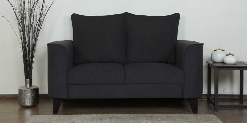 Lara Two Seater Sofa in Charcoal Grey Colour by CasaCraft