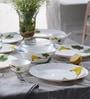 Diva Amber Lily Opal Ware Dinner Set - Set of 64 by La Opala