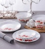 Diva Tulip Garden Opal Ware 19-Piece Dinner Set by La Opala