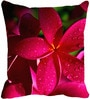 Leaf Designs Red Microfibre 16 x 16 Inch Cushion Cover