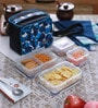 Lock&Lock Transparent Polypropylene Lunch Boxes with Deluxe Bag - Set of 4