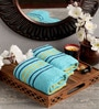 Blue Cotton 16 x 24 Hand Towel - Set of 2 by Lushomes