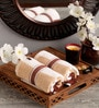 Lushomes Brown Cotton 16 x 24 Hand Towel - Set of 2