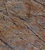 Brown Non Woven Fabric Washable Wallpaper by Marshalls WallCoverings