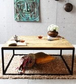 Questa Coffee Table in Metal with Wooden Top