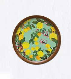 Multicolour Wooden Base 10 Inches In Diameter Succulent Pleasure Wall Hanging