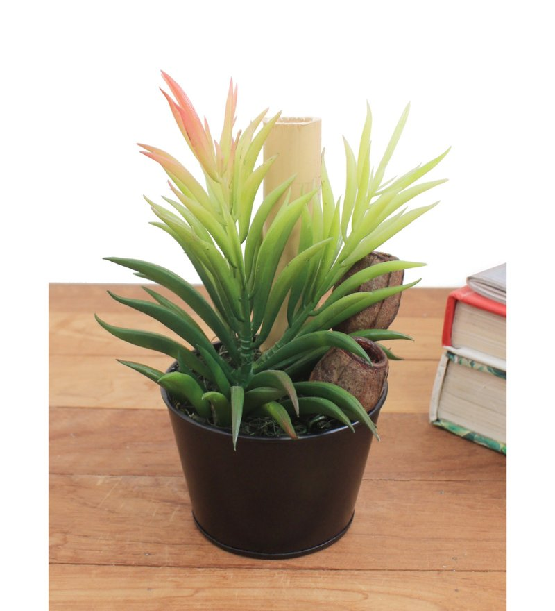 Multicolour Synthetic Rubber & Metal Artificial Plant with Pot by Deco Aro