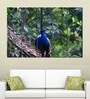 Multiple Frames Printed Peacock Art Panels like Painting - 5 Frames
