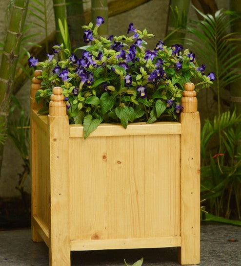 Buy Natural Handmade Box Wooden Planter by Point of Hue Online ... on wooden bollards, wooden bookends, wooden plows, wooden pedestals, wooden decking, wooden bird houses, wooden troughs, wooden home, wooden garden, wooden trellis, wooden toys, wooden arbors, wooden bird feeders, wooden rakes, wooden greenhouses, wooden plates, wooden bells, wooden benches, wooden chairs, wooden pavers,