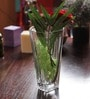 Nachtmann Transparent Art Decor Vase