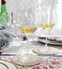 Nachtmann 613 ML Wine Glass - Set of 4