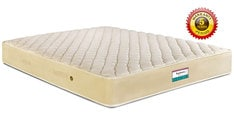 Normal Top King Size (78x72) 6 Inch  Bonnell Spring Mattress
