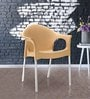 Novella Chair in Biscuit Colour by Nilkamal