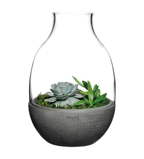 Buy Grey Glass Terrarium Vase By Nude Online Glass Vases Vases