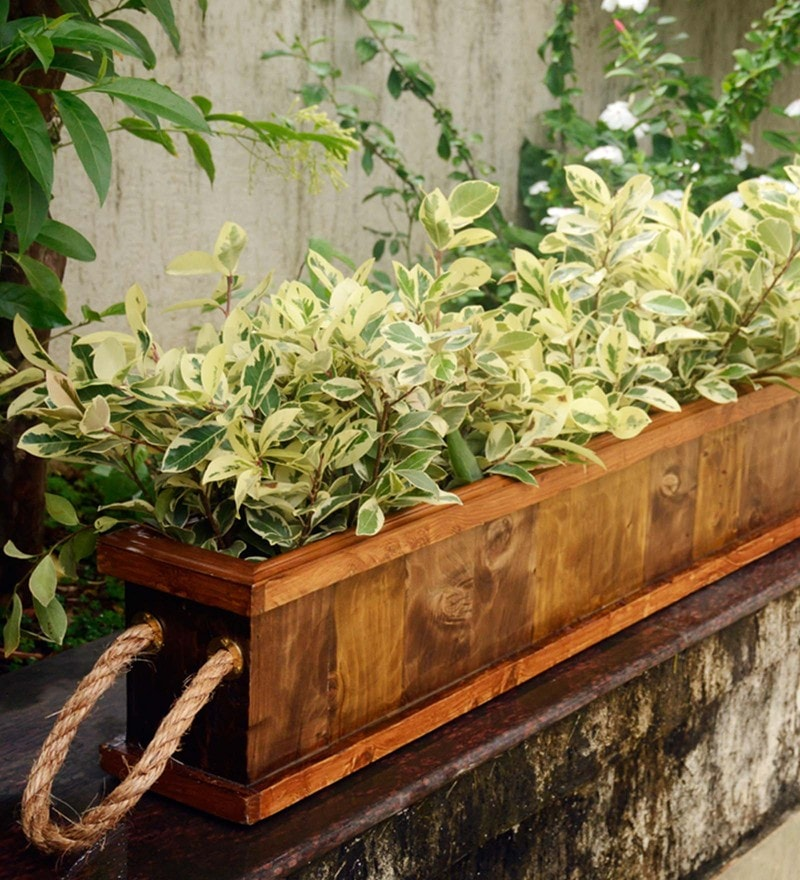 Olive Green & Brown Handmade Plank Double Partition Wooden Planter by Point of Hue