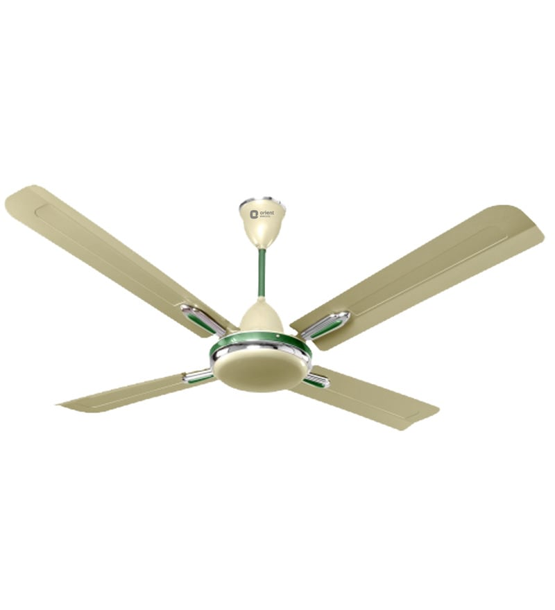 Buy orient quadro ornamental golden chocolate 1200 mm ceiling fan orient quadro ornamental sea green oyster green 1200 mm ceiling fan mozeypictures Image collections