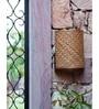 Brown Sheetal Pati Sylvan Wall Lamp by Orange Tree