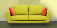Panache Three Seater Sofa in Green Colour