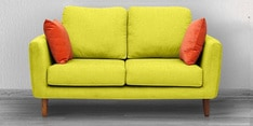 Panache Two Seater Sofa with Cushions in Green Colour