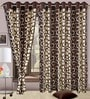 Precious Brown Polyester Eyelet Window Curtain- Set of 2 by Cortina