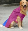 Pawzone Rain Coat for Dog in Purple (Size -16)