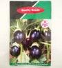 PBC Brinjal Chu-chu Black Nagina Seed - Pack of 2 (200 Seeds)