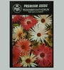 PBC Mesembryanthemum Mid Day Flower Premium Seeds - Pack of 2 (200 Seeds)