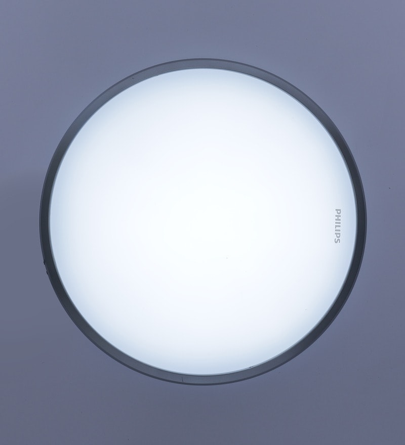 31814 Flush Mounted Light by Philips