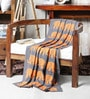 Indian Elephants Knitted Cotton Kid's Blanket by Pluchi