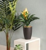 Yellow Polyester Guzmania Artificial Plant with Pot by Pollination