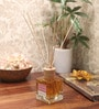 Premsons Berry Aroma Reed Diffuser
