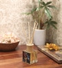 Scents of The Sea Reed Diffuser Bottle with 10 Rattan Reed Sticks by Premsons