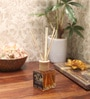 Vanille Exotique Reed Diffuser Bottle with 10 Rattan Reed Sticks by Premsons