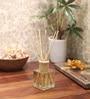 Premsons Virid Violet Reed Diffuser Bottle with 10 Rattan Reed Sticks
