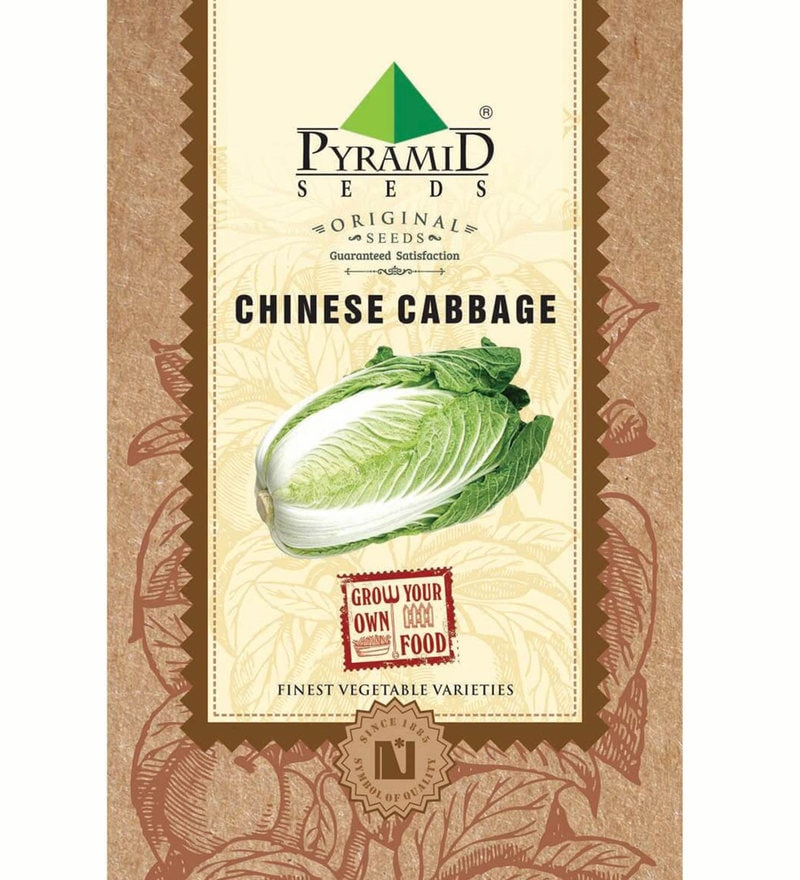 Chinese Cabbage Seeds by Pyramid Seeds