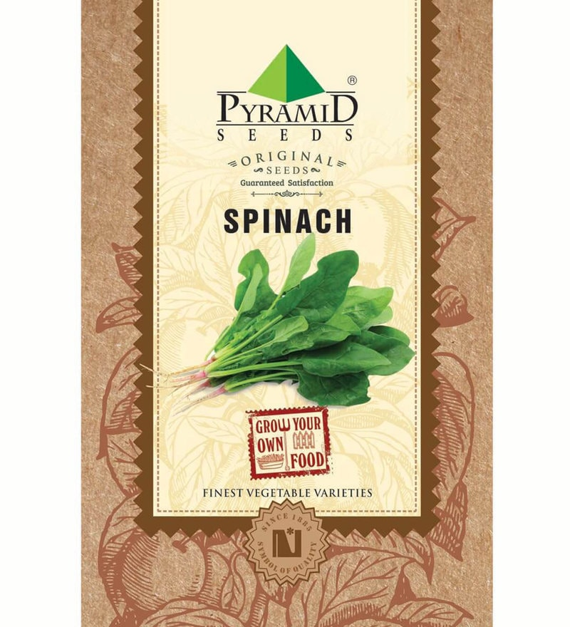 Spinach (Palak) Seeds by Pyramid Seeds